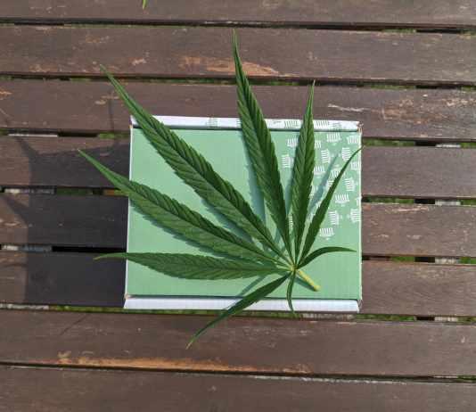 Herbalife Ingredients in Enrichual