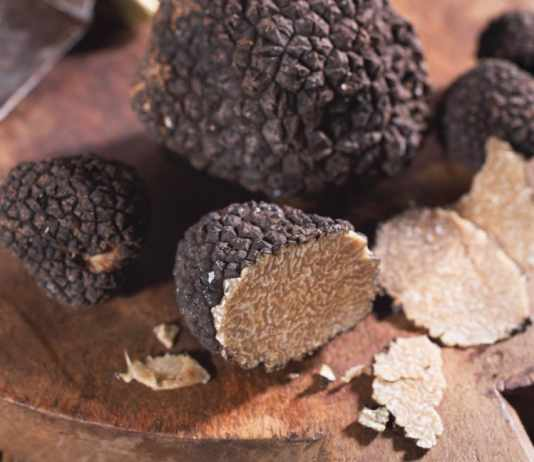What is a truffle